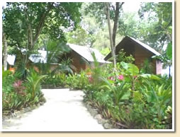 3 bungalows with tropical garden